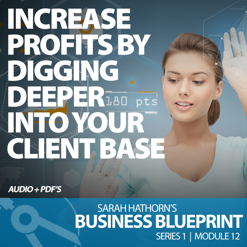 Increase Profits By Digging Deeper Into Your Client Base